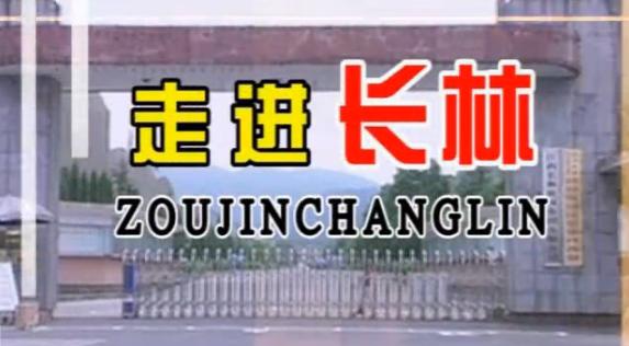 走进长林2008